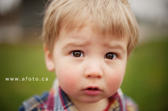 vancouver kids photography, abbotsford kids photography